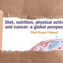 Nuevo informe refuerza el llamado por una mejor dieta y más actividad física para prevenir el cáncer
