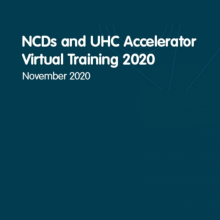 Increasing the capacity of established NCD alliances to drive effective in-country NCD and UHC advocacy
