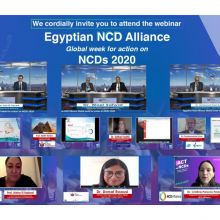 The Egyptian NCD alliance is bridging the accountability gap for progress on NCDs