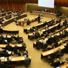 70th session of the WHO World Health Assembly (WHA70)