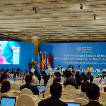 Scaling up action on NCDs in the South-East Asia region