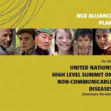 NCD Alliance Launches Plan for UN NCD Summit