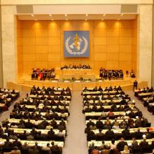 71st World Health Assembly (WHA71)