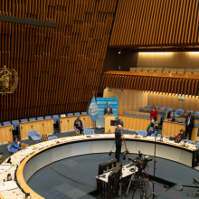 73rd World Health Assembly (WHA73) November 2020