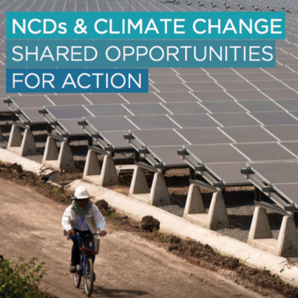 NCDs and climate change policy brief