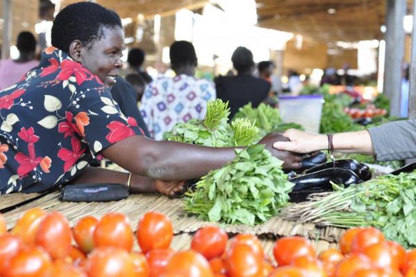 East Africa: Regional advocacy planning in focus