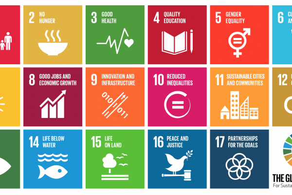2030 Agenda: Follow-up and review