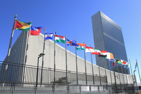 Preparing for the UN High-Level Meeting on NCDs: What you need to know