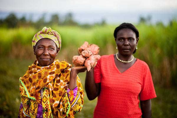 Addressing major food system reform to tackle nutrition-related NCDs